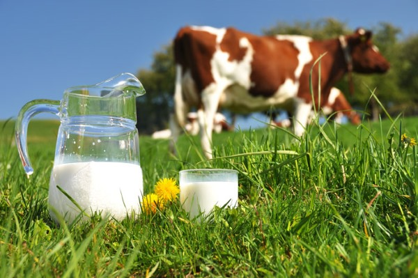 Аллергия у грудничка на лице. Фото на смесь, молоко, сладкое. Как выглядит, лечение