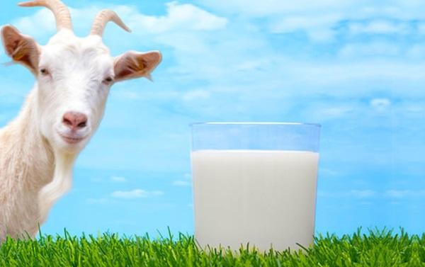 Детское питание для новорожденных. Какие смеси лучше? Обзоры, рейтинги, отзывы, цены, списки без пальмового масла и на козьем молоке