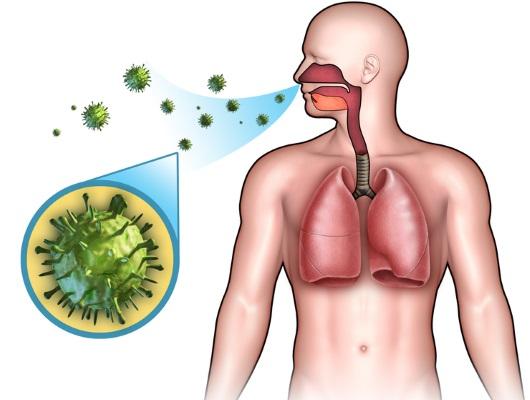 Как лечить зеленые сопли у ребенка. Народные средства, препараты. Причины появления с утра, с запахом, кровью, кашлем, температурой и без