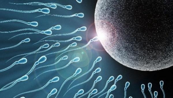 Актиферт гель для зачатия: отзывы, состав, инструкция по применению, побочные действия, аналоги, цена