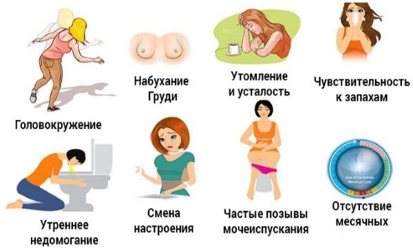 Беременность на ранних сроках. Симптомы до и после задержки, ощущения женщины. Тесты