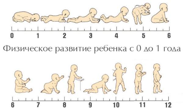 Что должен уметь ребенок в 1 год. Таблица по месяцам. Памятка для родителей