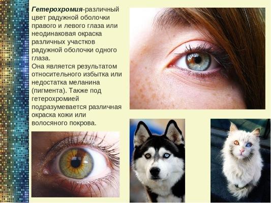 Цвет глаз у новорожденных. Когда меняется, формируется окончательно, возраст, какой бывает