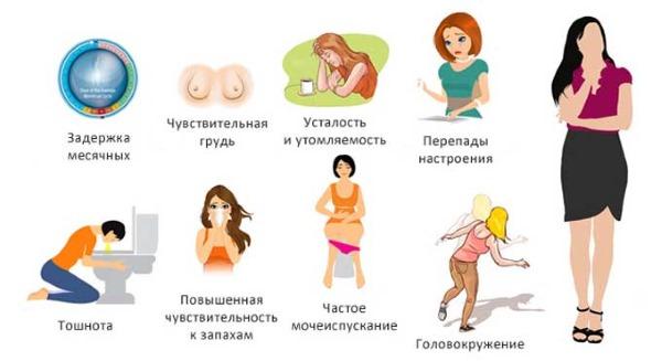 Как узнать срок беременности по последним месячным. Рассчитать по дате, по задержке, первые признаки, симптомы