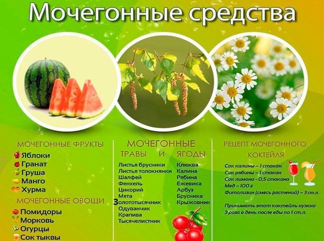 Мочегонные средства для беременных. Таблетки, травы, продукты, народные средства