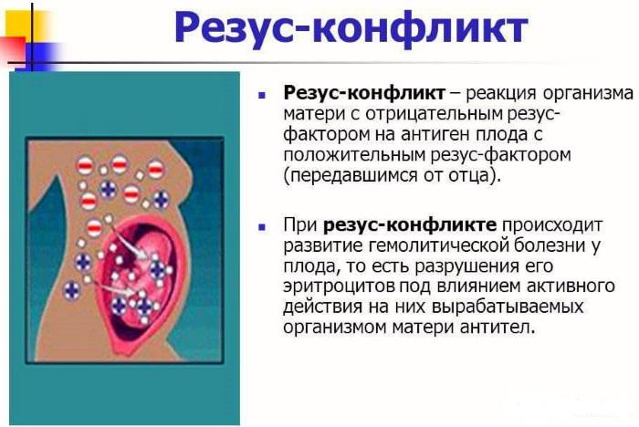Вес ребенка по неделям беременности. Таблица, норма вес, рост, особенности развития