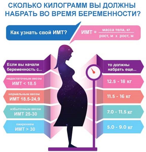 Беременность по месяцам. Фото живота, размеры, особенности роста и вынашивания плода