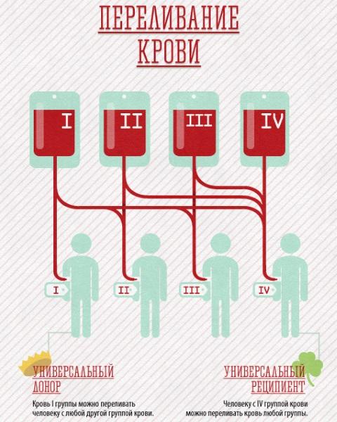 Совместимость по группам крови и резус-фактору при зачатии ребенка