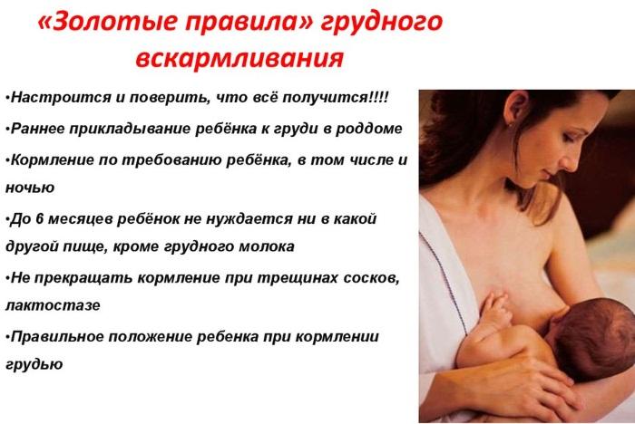 Как правильно прикладывать ребенка к груди при кормлении. Видео, фото, как научиться