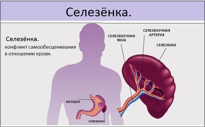 Повышенные тромбоциты у ребенка в крови. Норма, причины отклонений, что делать
