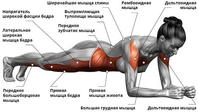 Как убрать живот после кесарева. Восстановление, спорт, питание, обертывание, массаж