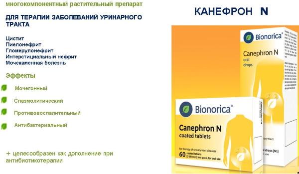 Канефрон при беременности 1-2-3 триместр. Инструкция по применению