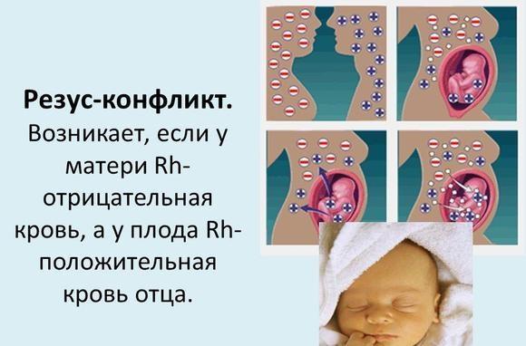 12 недель беременности. Фото живота, плода, УЗИ, что происходит, можно ли узнать пол ребёнка