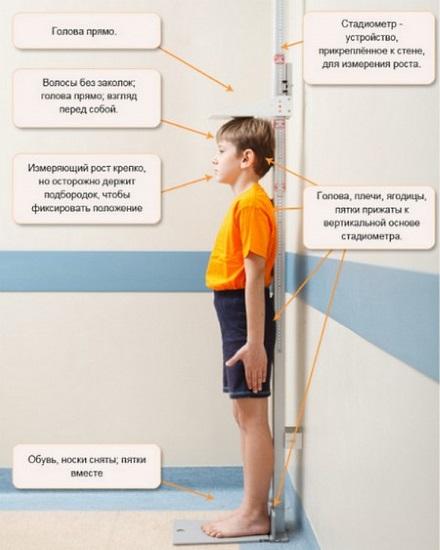 Норма роста и веса у подростков. Центильные таблицы