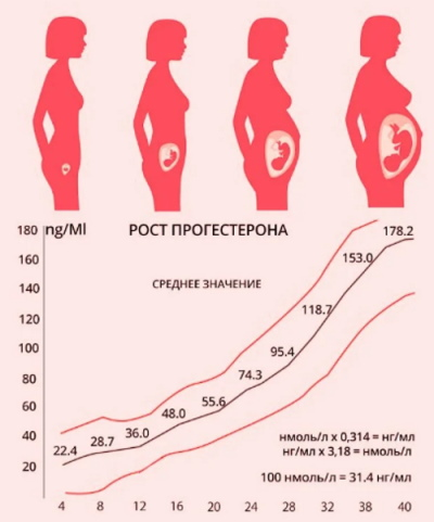 Прогестерон. Норма при беременности по неделям, 17-ОН выше, ниже нормы