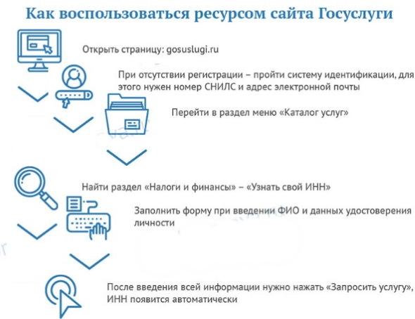 Снилс. Что это за документ, фото, как выглядит, как получить, восстановить, проверить онлайн