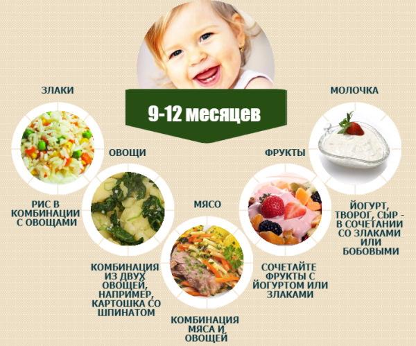 Рацион 10-месячного ребенка на каждый день, неделю на искусственном, грудном вскармливании. Меню