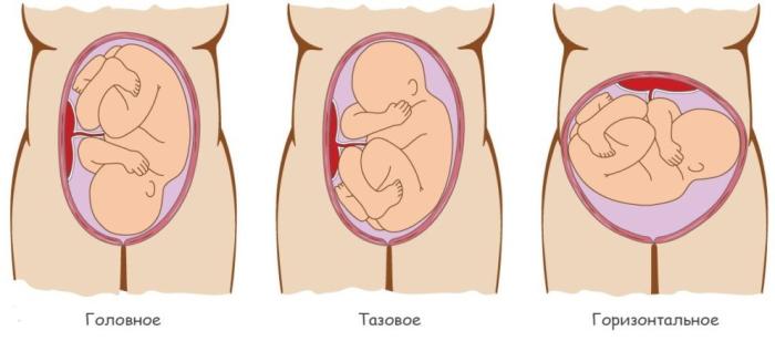 Как разбудить ребенка в животе перед КТГ, УЗИ на 21-23-27-35-39 неделе беременности