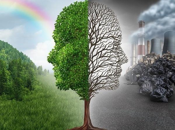Как человек загрязняет природу. Рисунки, примеры, доклад, как бороться